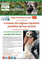 Stage di Tellington Touch®